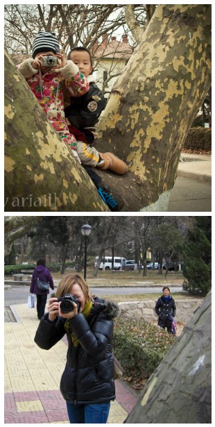 Kids in tree diptych