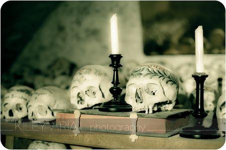 Hallstatt bone room 7