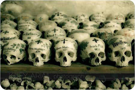 Hallstatt bone room 9