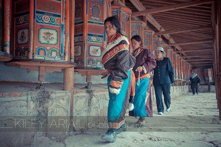 Qinghai web 16