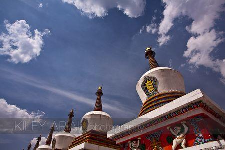 Qinghai web 1