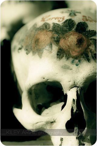 Hallstatt bone room 11